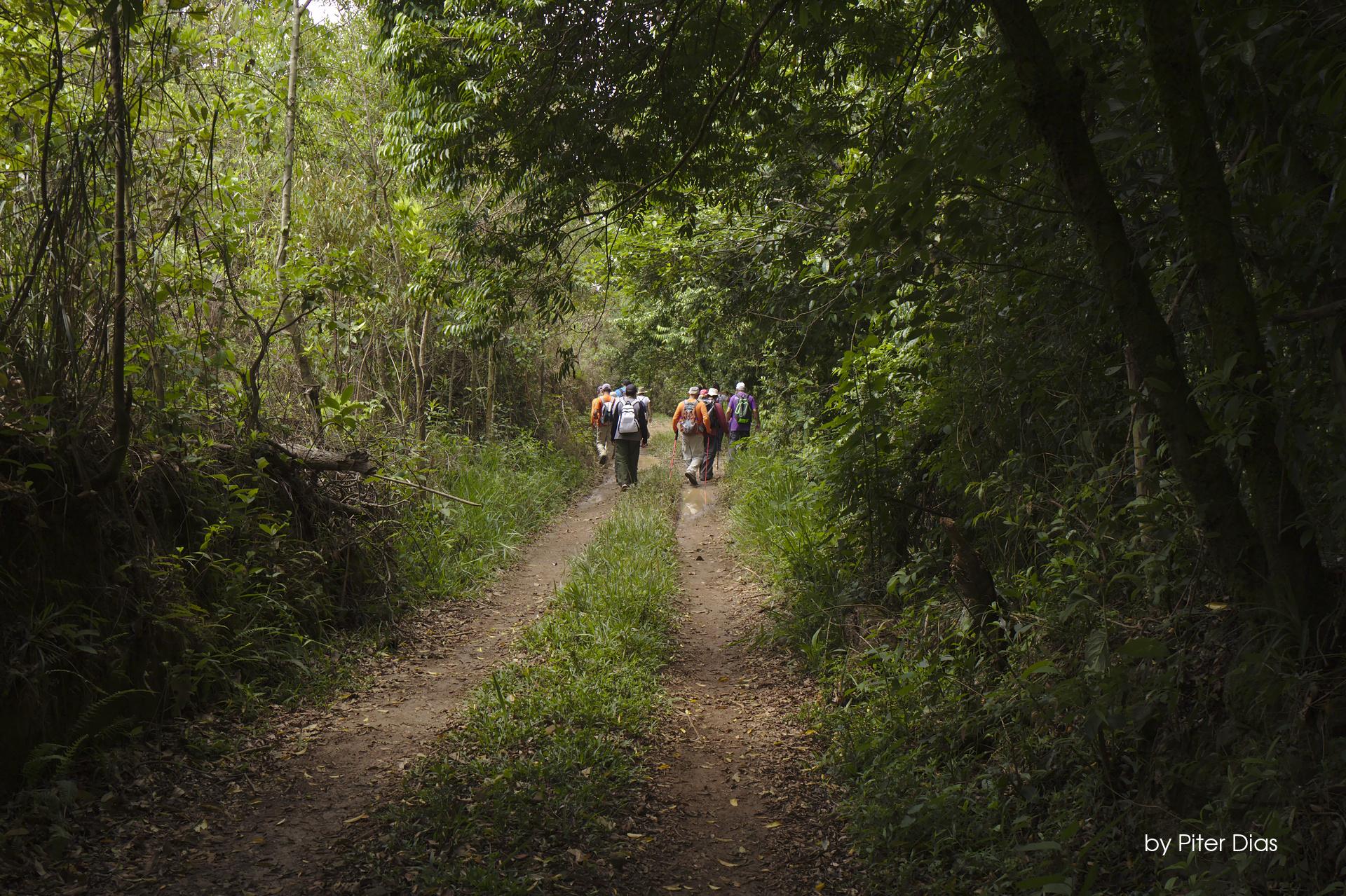 Indiana Dias e a Travessia da Serra da Prata