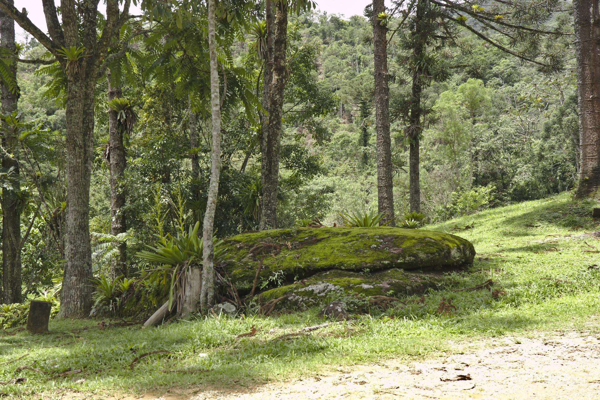 Trilha Noturna no Pico da Onça